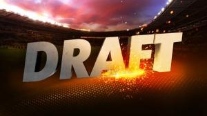 o_20140603121941_que_necesitan_los_18_equipos_del_futbol_mexicano_en_el_draft